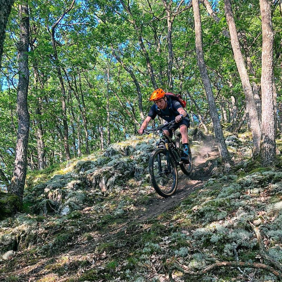 Intensivkurs Level I (Bike Flow Days)